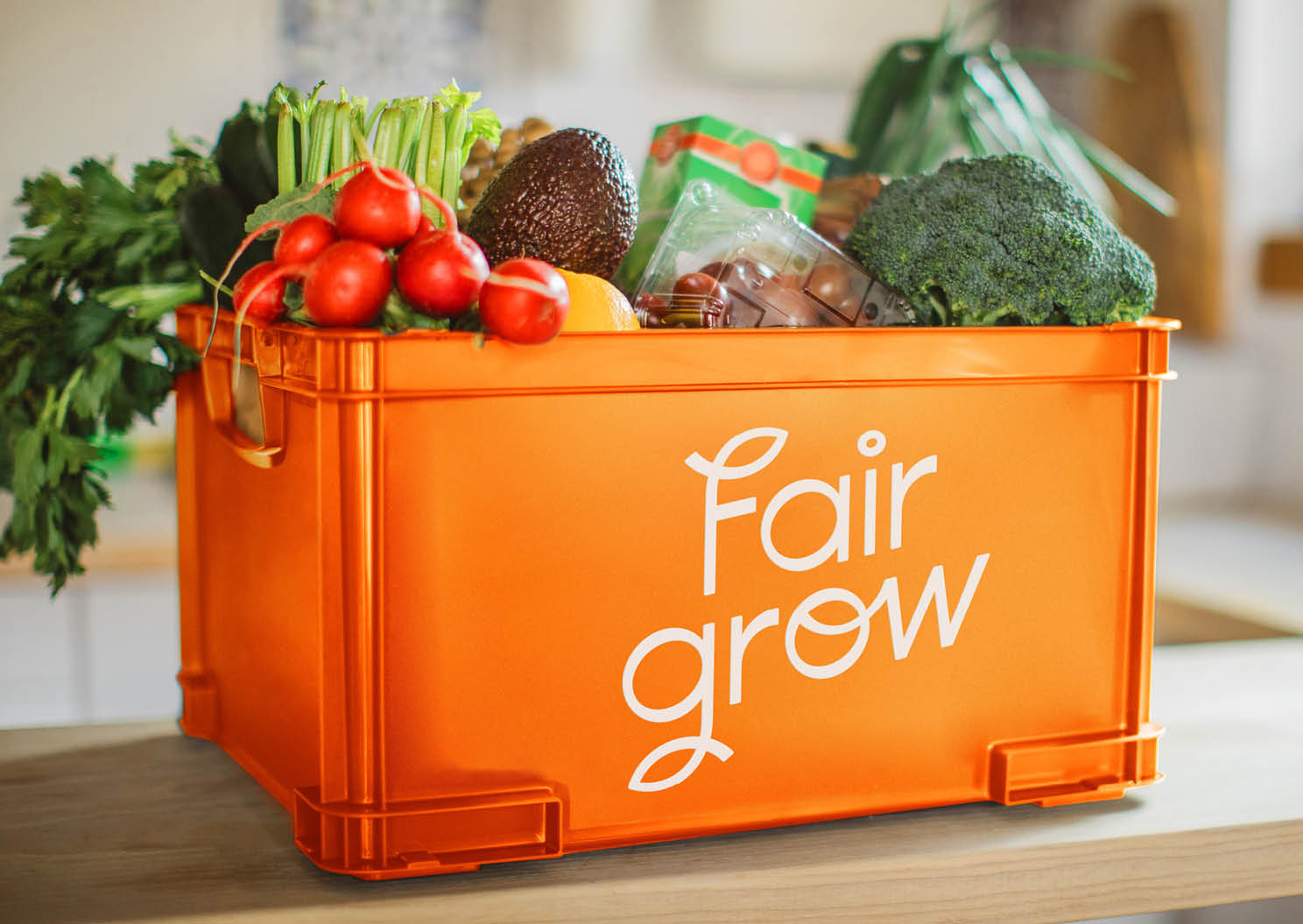Fairgrow box of veg